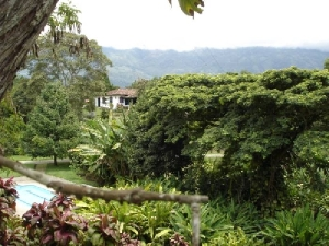 Finca-La-Colina-Calarca-Quindio-12